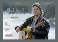 David Llewellyn Website